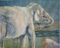 ElephantEmbrace
